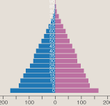 The population pyramid, sadly without animation or interaction.