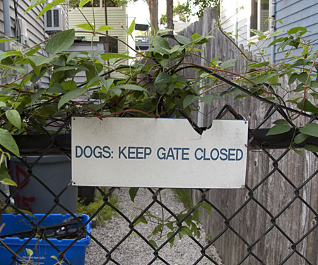 Dogs: Keep Gate Closed
