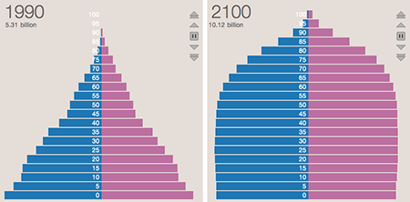 population pyramids for 1990 and 2100